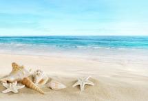 beache-g